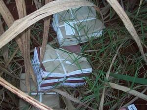 Material escolar é jogado em canavial entre Rio das Pedras e Mombuca (Foto: VC no G1)