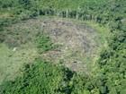 Ibama implanta base em Apuí, no AM, para reduzir desmatamento