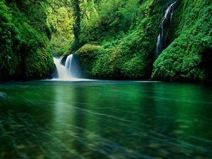 paraíso natural