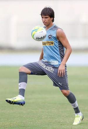 Zeballos Treino Botafogo (Foto: Alexandre Cassiano / Agência O Globo)