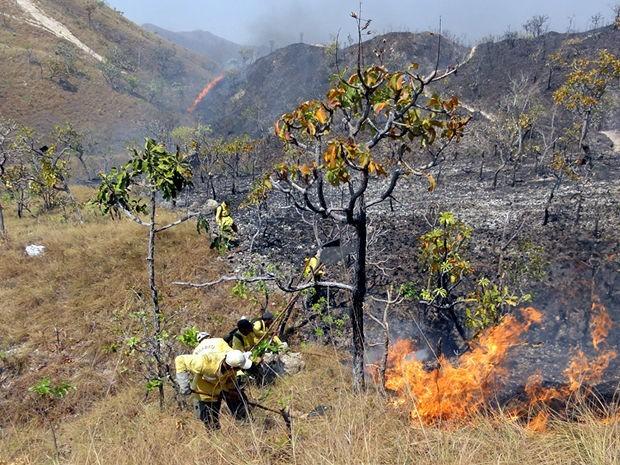 Brigadistas trabalham no combate ao incêndio em Chapada dos Guimarães (Foto: Robson Luiz / Prefeitura de Chapada dos Guimarães)