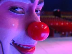 Bastidores do circo Tihany Spectacular em Campinas (Foto: Reprodução / EPTV)