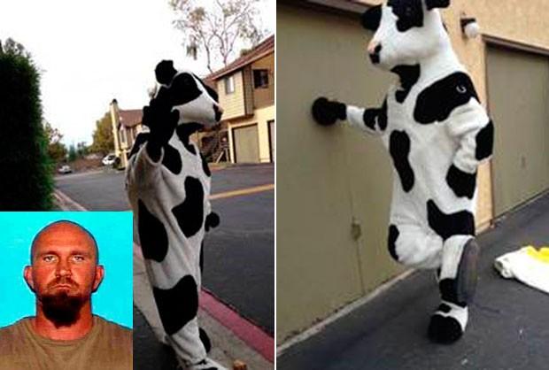 Ladrão foi preso por roubar duas fantasias de vaca (Foto: Redlands Police/AP)