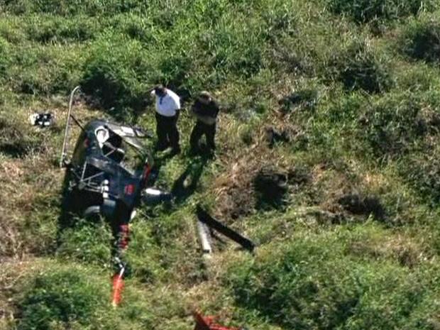 Helicóptero pousado em gramado do Parque Ecológico do Tietê (Foto: Reprodução/TV Globo)