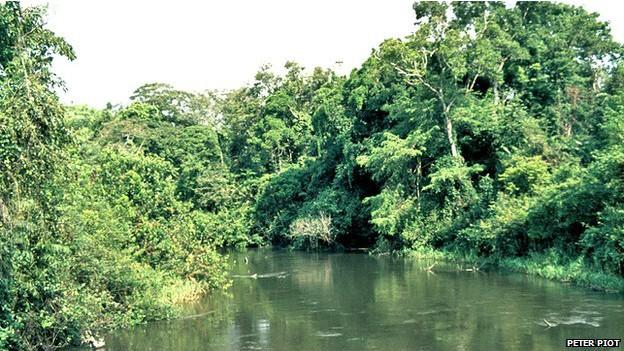 Vírus foi batizado com nome de rio para evitar estigma na comunidade (Foto: Peter Piot/BBC)