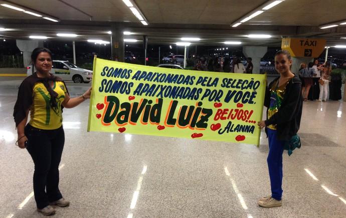 Faixa David Luiz Torcida Seleção Brasileira  (Foto: Thiago Lavinas)