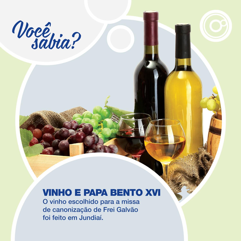 Região tem tradição na cultura da uva e na produção de vinhos (Foto: Reprodução/TV TEM)