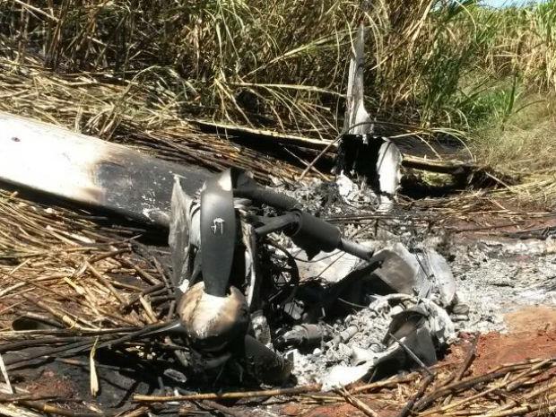 Avião caiu em um canavial em Bocaina (Foto: Monize Poiani/ TV Tem Bauru)