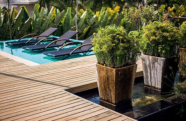 Encontro | Entre a piscina de borda infinita  e o espelho d'água, o paisagista criou o deque  que interliga os espaços. Nos vasos de  cimento, ele dispôs minipapiros africanos  (Foto: Alexandre Pottes Macedo)