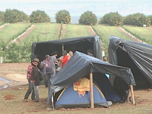 Invasão MST Borebi  (Foto: reprodução/TV Tem)