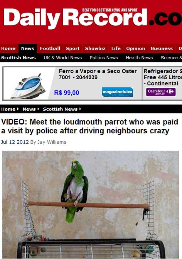 Sons emitidos pelo papagaio fizeram vizinho chamar a polícia (Foto: Reprodução)