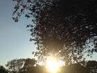Calor com névoa seca continua em MS na quinta-feira, diz Inmet