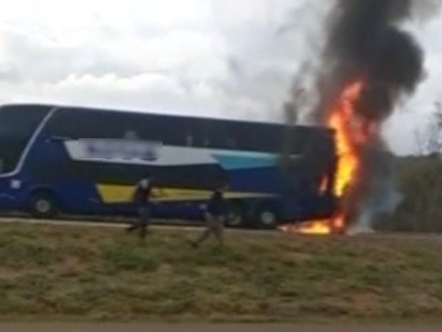 Ônibus pega fogo na BR-153, próximo a Professor Jamil, em Goiás (Foto: Reprodução/TV Anhanguera)