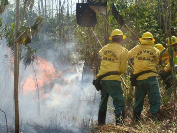 Brigadistas em atuação de combate a incêndio. (Foto: Divulgação/Sipam)