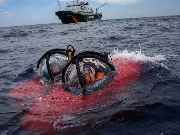 amapá; macapá; greenpeace; corais; (Foto: ©Marizilda Cruppe/Greenpeace)