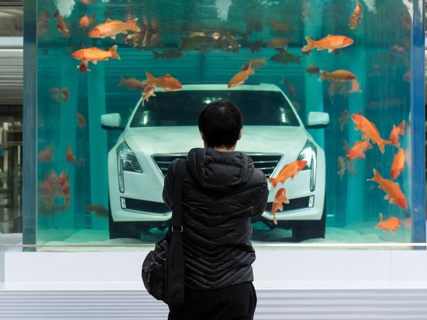 Aquário com Cadillac pode ser visto em Xangai (Foto: REUTERS/China Daily )