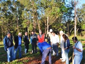 Árvores foram plantadas durante a manhã (Foto: Prefeitura de Presidente Prudente/Divulgação)