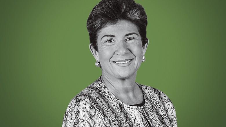 Vera Ribeiro, presidente da Vetnil (Foto: Celso de Menezes/Divulgação)