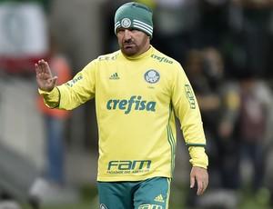 Cuquinha Palmeiras X Fluminense (Foto: Mauro Horita)