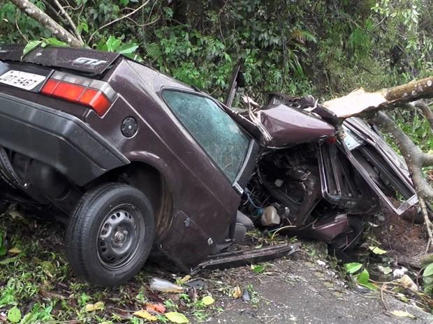 Homem ficou ferido após bater com carro em árvore em Poços de Caldas (MG) (Foto: Reprodução EPTV)