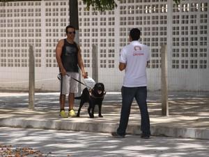 Animal sendo treinado no Laboratório Acessível para Formação de Cão-Guia  (Foto: Divulgação)