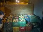Caminhão com duas toneladas de manga é apreendido em Roraima