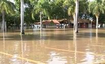 Turistas ficam frustrados com cenário após cheia do rio Tietê: 'Destruiu tudo' (Reprodução / TV TEM)