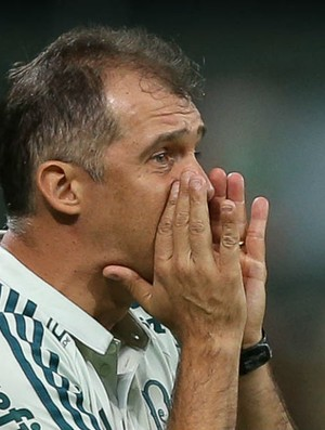 BLOG: Oscilações de desempenho atrapalham o Palmeiras