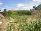 Terrenos sujos e com mato em MS preocupam moradores