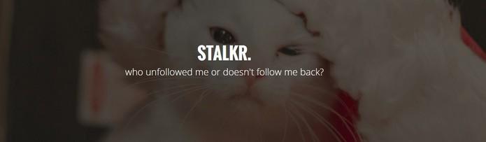 Stalkr mostra quem parou de te seguir e quem não te segue de volta no Tumblr (Foto: Reprodução/Stalkr)