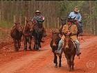 Dezenas de cavaleiros revivem as aventuras dos tropeiros em SP