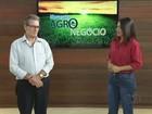 Pequenos agricultores ganham local para negociar produtos em Palmas