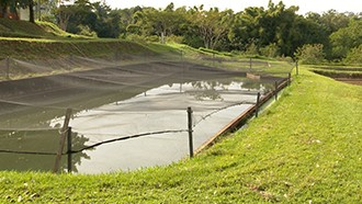 Irrigação com baixo custo é destaque do programa (Foto: Reprodução TV Fronteira)