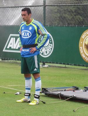Tiago Alves palmeiras (Foto: Gustavo Serbonchini)
