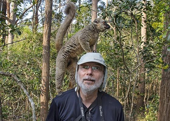 Acostumado com macacos, Sergio Coimbra, filho do maior primatólogo brasileiro, Dr. Adelmar Coimbra Filho, não teve dificuldade em receber um lêmure-marrom em seu ombro (Foto: © Haroldo Castro/ÉPOCA)