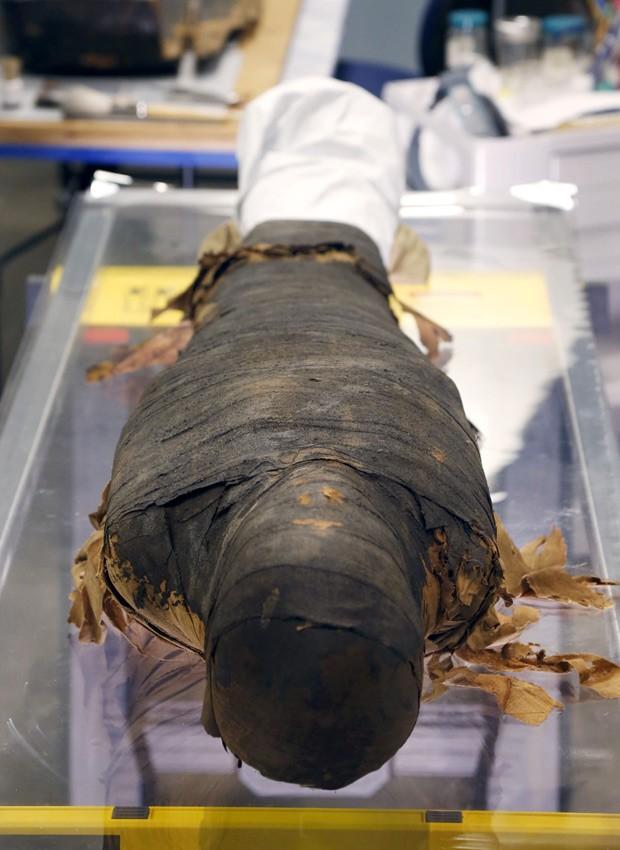 Múmia pertence a museu desde os anos 1920 (Foto: AP Photo/Charles Rex Arbogast)