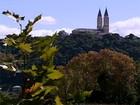 Vinícolas e passeios históricos atraem turistas a Bento Gonçalves