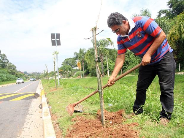 Sementes para o plantio de 1,2 mil árvores são oferecidas em Poá.  (Foto: Wanderley Costa/Prefeitura de Poá)