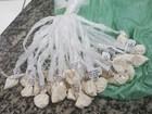 Polícia encontra drogas escondidas em hidrômetro em Teresópolis, no RJ