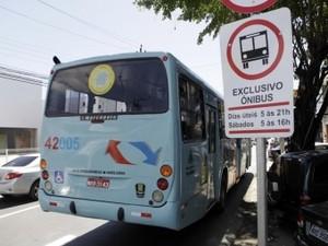 As novas linhas vão facilitar o transporte de passageiros (Foto: Divulgação/Etufor)
