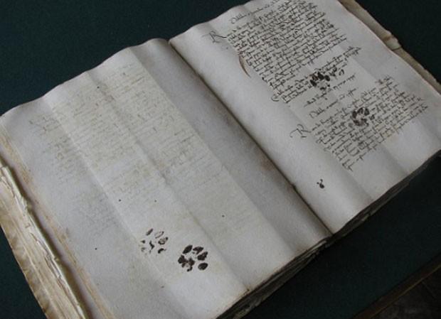 Marcas dão a impressão de que são da mesma época em que a obra foi escrita, no século 15 (Foto: Reprodução)