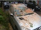 Árvore cai sobre carro no bairro Menino Deus, em Porto Alegre