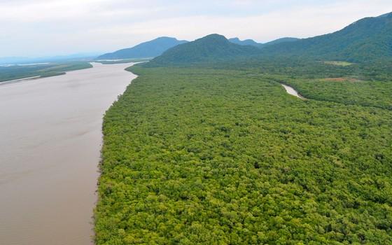 A região do Lagamar em São Paulo tem florestas bem preservadas que podem ganhar pagamentos por serviços ambientais (Foto: Divulgação - Iniciativa Verde)