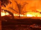 Tempo seco causa incêndios florestais em 17 municípios do Pará
