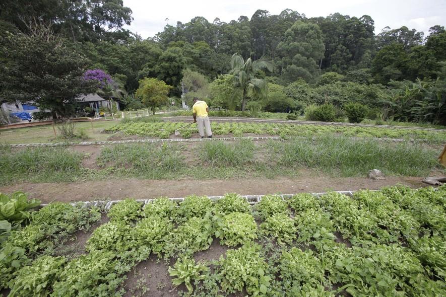 Rodeados por uma área de Mata Atlântica, os presos cultivam verduras orgânicas que são vendidas na loja ao lado da cadeia