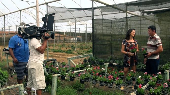 'Pé na Pista' conhece Maracás, a Cidade das Flores (Foto: TV Bahia)