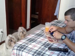 cachorros (Foto: Hugo Seabra/Arquivo Pessoal)