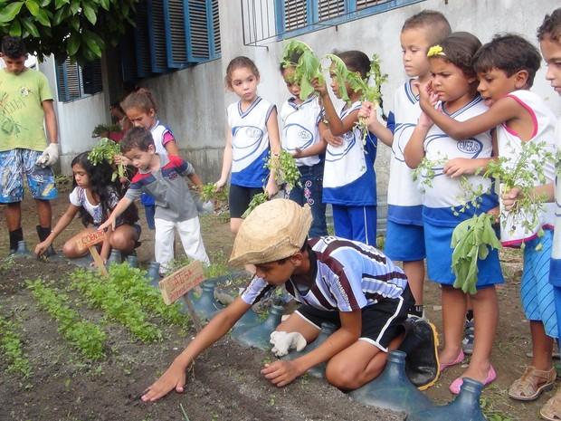 Alunos aprendem sobre plantio e educação ambiental em horta escolar. (Foto: Carolina Sanches/ G1)