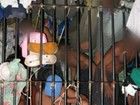 Policiais civis denunciam que presos vivem em condições precárias no AM