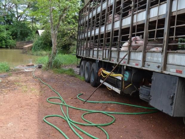 Água usada para lavar a carreta escorreu para córrego (Foto: Guaraí Notícias/Divulgação)